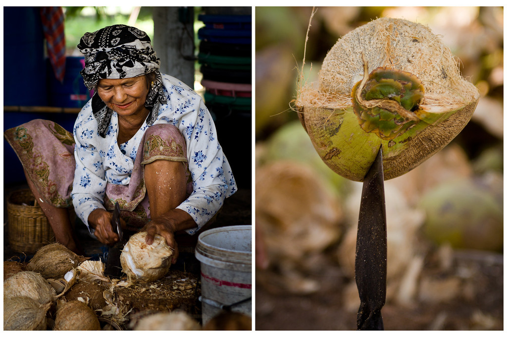 An old lady cleaning coconuts in a farm in Thailand and a blade used to remove the coconut husk.