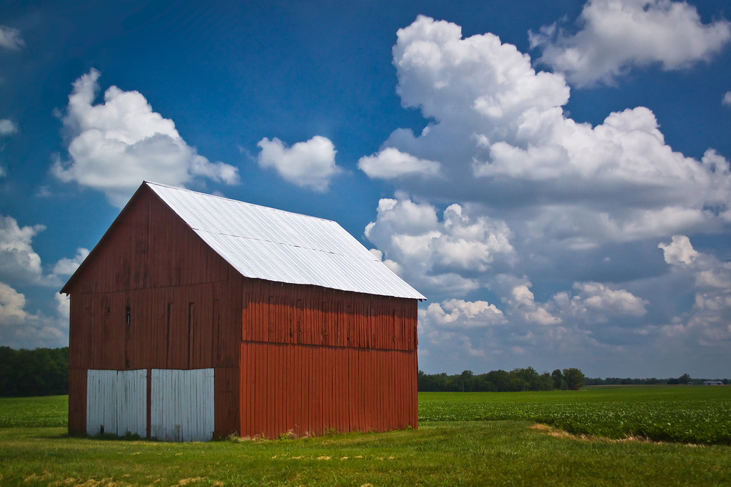 A red barn in a soya beans filed in Kentucky, USA.