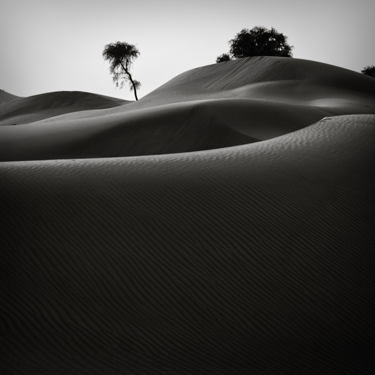 A square shot of the desert in the UAE near Dubai in Black and White with dunes and sand ripples.