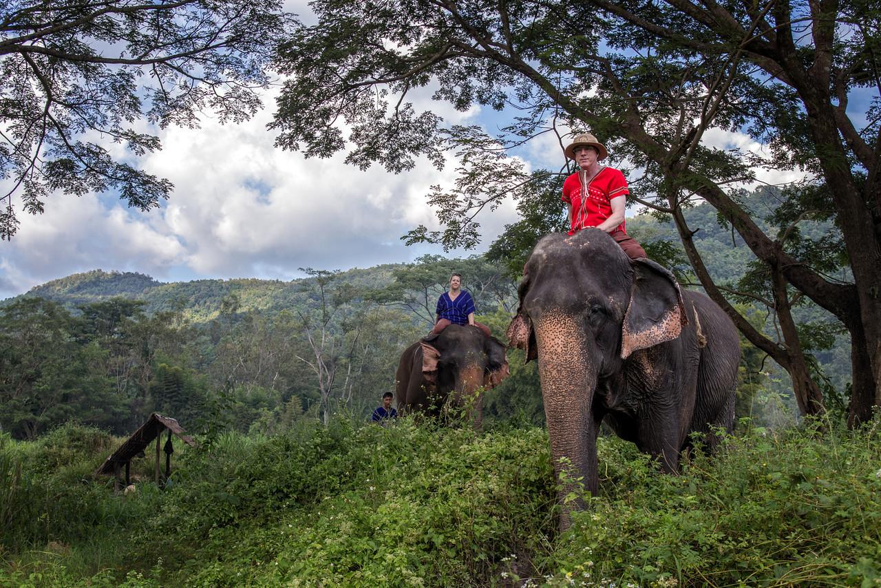 Riding the Elephants